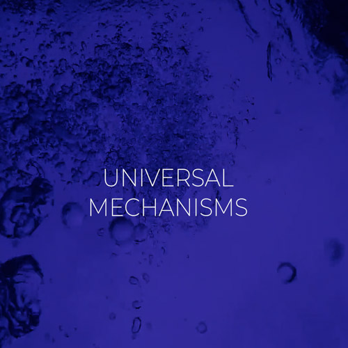 mobile-universal